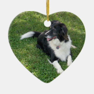 Heart Ornament - Border Collie (Image)