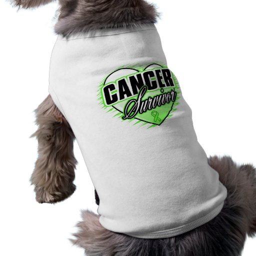 Heart Ribbon Survivor Non-Hodgkin's Lymphoma Pet T-shirt