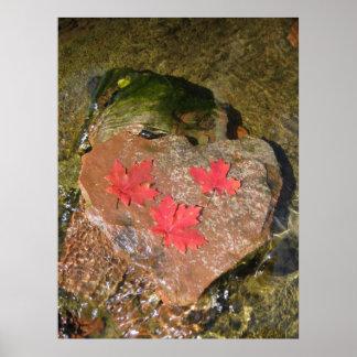 Heart Rocks (4) Poster