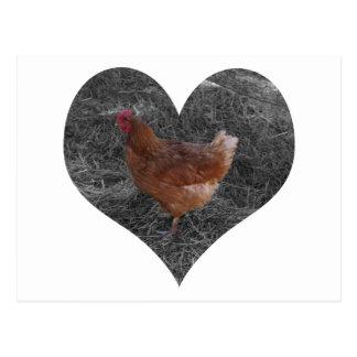 Heart Shaped Chicken Postcard