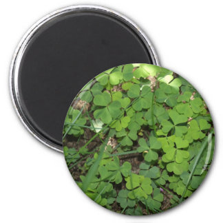 heart shaped clovers 2 2 inch round magnet