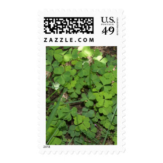 heart shaped clovers 2 postage stamps