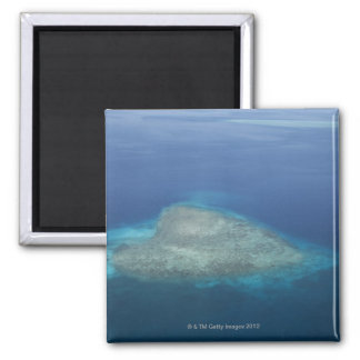 Heart shaped coral reef magnet