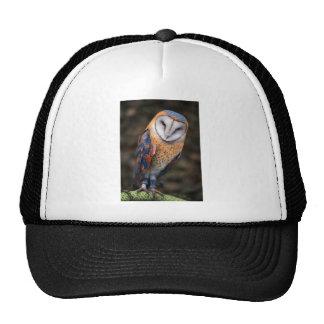 Heart-Shaped Face Barn Owl Trucker Hat