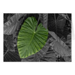 Heart Shaped Green Leaf Cards