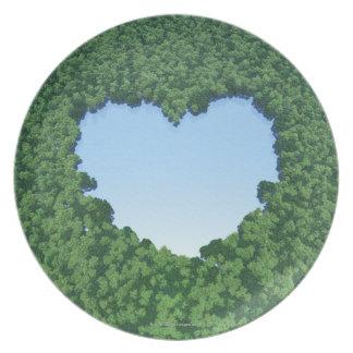 Heart-Shaped Lake Melamine Plate