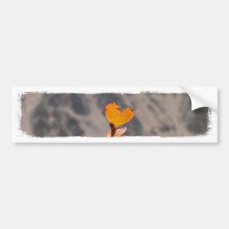 Heart-Shaped Leaf Bumper Sticker