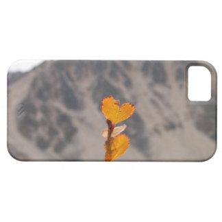 Heart-Shaped Leaf iPhone SE/5/5s Case