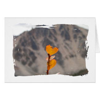 Heart-Shaped Leaf; Thank You Card