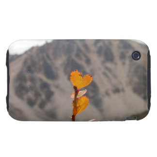 Heart-Shaped Leaf Tough iPhone 3 Covers