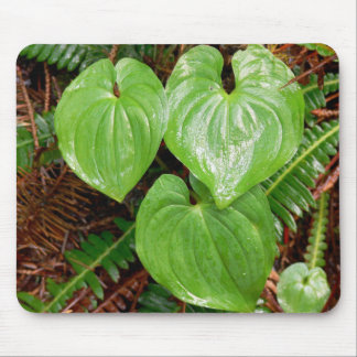 Heart Shaped Leaves Mouse Pad
