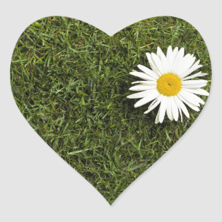 Heart shaped piece of lawn with big daisy flower heart sticker