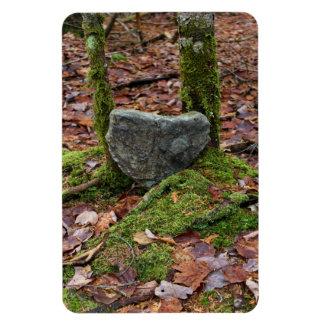 Heart-Shaped Rock Magnet