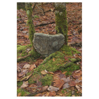 Heart-Shaped Rock Wood Poster