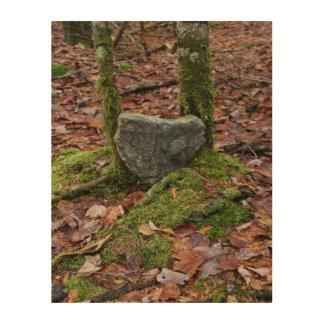 Heart-Shaped Rock Wood Wall Art