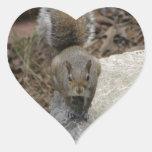 Heart Shaped: Squirrel Sticker