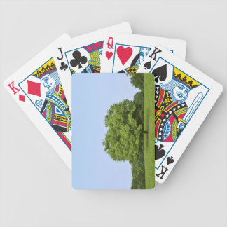 Heart shaped tree, Saitama Prefecture, Japan Bicycle Playing Cards