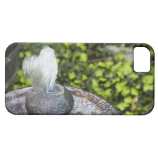 Heart Shaped Water iPhone 5 Cases
