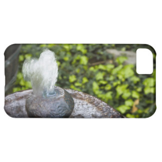 Heart Shaped Water iPhone 5C Case