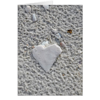 Heart Shell Blank Note Card