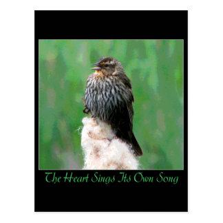 Heart Song Postcard