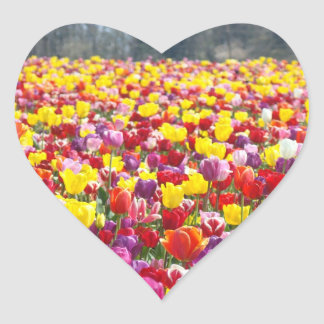 Heart stickers Colorful Tulip Flowers Festival