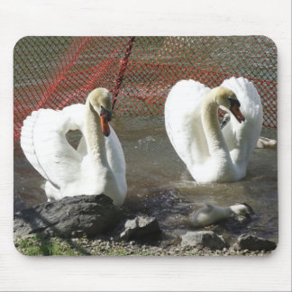 Heart Swans and Babe Mouse Pad