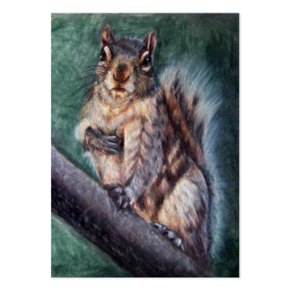 Heart Thump (Squirrel) ACEO Art Trading Cards Large Business Cards (Pack Of 100)