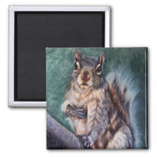 Heart Thump (Squirrel) Magnets