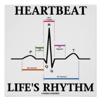 Heartbeat Life's Rhythm (ECG / EKG Heartbeat) Poster