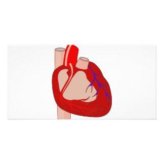Hearted grande tarjetas fotograficas personalizadas