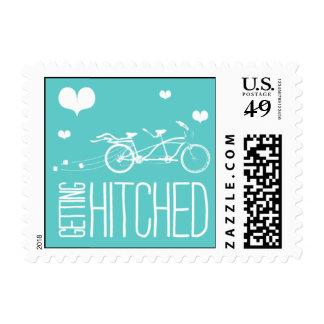 Heartfelt - Getting Hitched - Blue Stamp