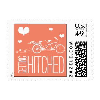 Heartfelt - Getting Hitched - Pink Stamps