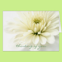 Heartfelt Sympathy Card