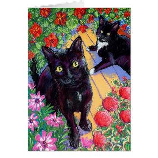 Heartland Cats Card
