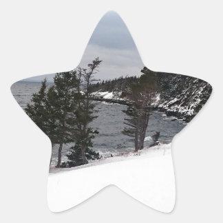 Heart's Delight Star Sticker
