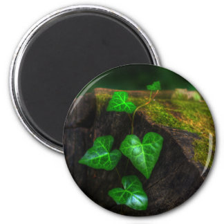 Hearts of Ivy 2 Inch Round Magnet