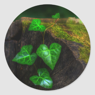 Hearts of Ivy Classic Round Sticker