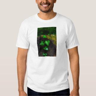 Hearts of Ivy Shirt
