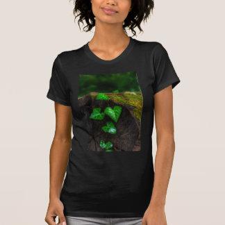 Hearts of Ivy T Shirt