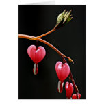 Hearts on a Curve Greeting Card