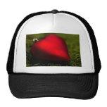 Heartshape Christmas Ornament Baseball Hat
