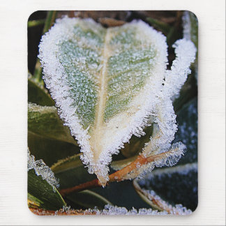 Heartshaped leaf with ice mouse pad