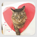 Heartthrob Cat Square Stickers