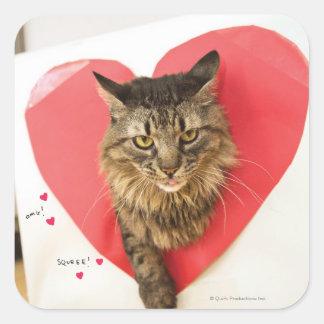 Heartthrob Cat Square Sticker
