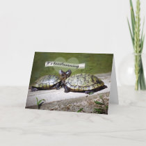 Heartwarming Friendship, Two Turtles Card