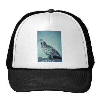 Heath Hen Trucker Hat