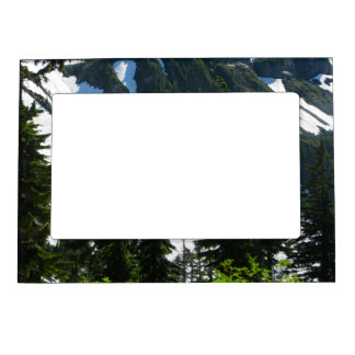 Heather Meadows Trees Magnetic Frame