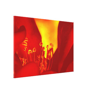 Heatwave Floral Abstract Canvas Print