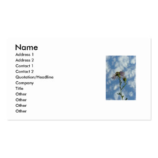 Heaven Double-Sided Standard Business Cards (Pack Of 100)